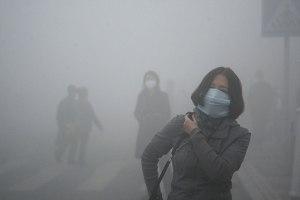 smogcina